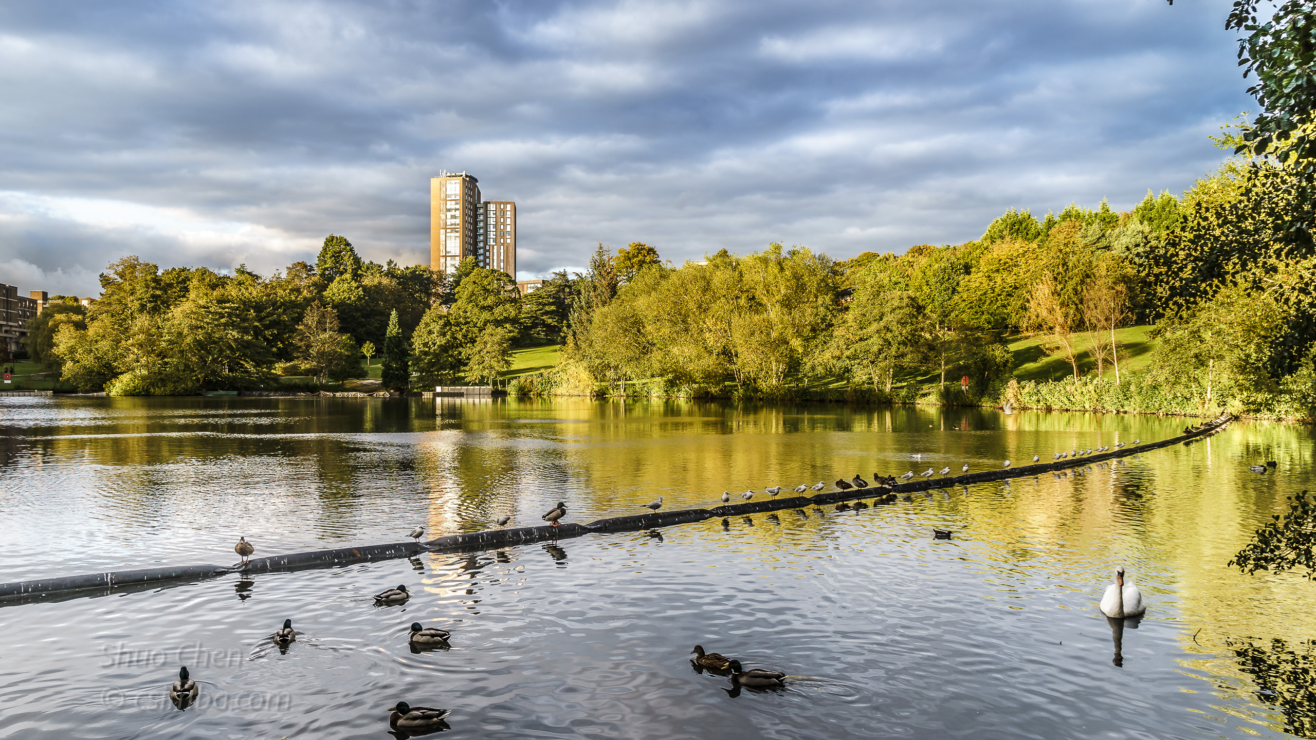 20161006 The University of Birmingham - Pond